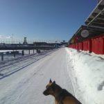 Promenade des marchands en hiver
