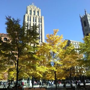Charming Place d'Armes in the Fall 2019