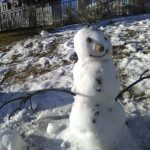 My LOCK DOWN snowman We where lucky enough the have wet snow,, just to make this little guy there. Adding a few pine branches and cones